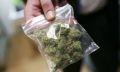 марихуана в брединском районе