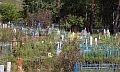 кладбище в брединском районе
