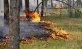 пожарная опасность в брединском районе