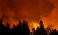 лесной пожар в брединском районе
