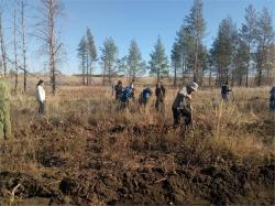 Тысяча и один дуб. В Брединском районе прошла акция «Живи, лес!»