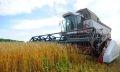 сельское хозяйство брединского района